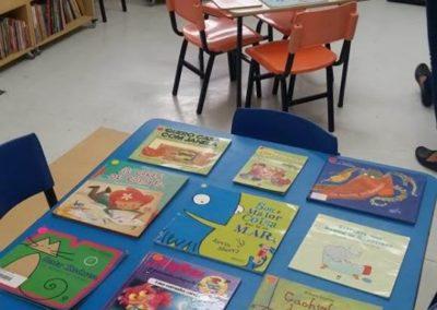Biblioteca Flor de Papel, preparando os empréstimos